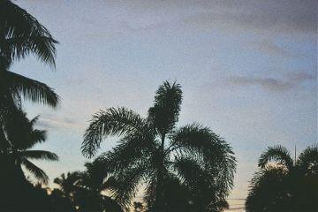 paradise travel travelvibes photography lifestyle