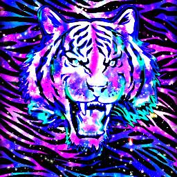 myart wallpaper tiger galaxy