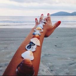 playahonda verano2016 freetoedit