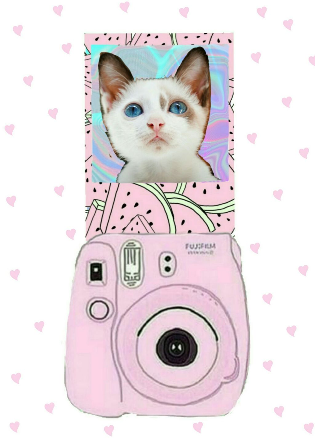 #FreeToEdit  #polaroid #cat #pink #myedit  @pa thanks for featuring my edit in Smash Hits