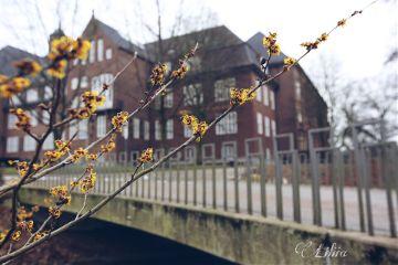 freetoedit urban photography