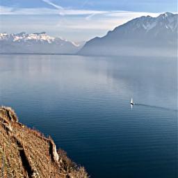 nature lake pureair