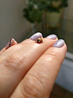 springinsect insect nailsart naildesign nails dpcnailart freetoedit