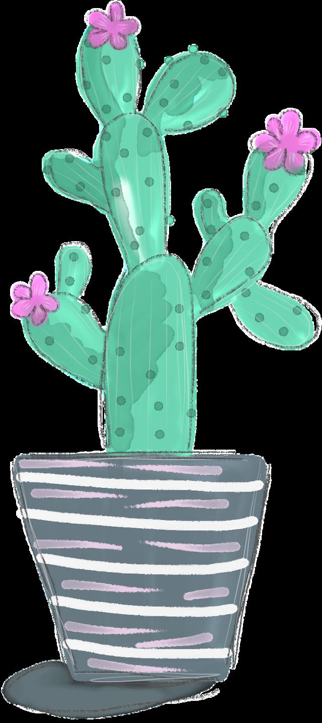 #FreeToEdit #ftestickers #cactus #plant