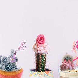 cactusremix freetoedit sweets unicorn cactus