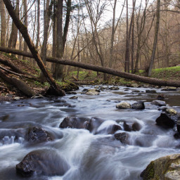 freetoedit nature landscape photography